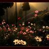 悲伤中绽放的花
